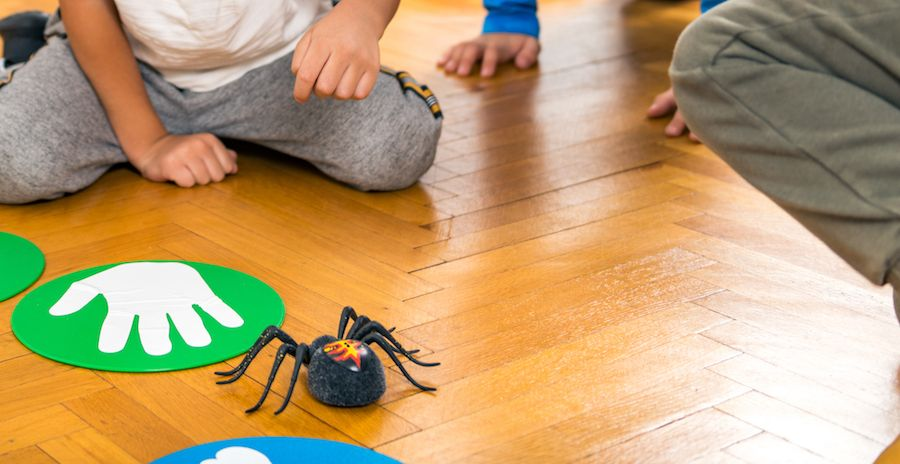 Arañas divertidas para Halloween