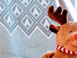 Cómo hacer un Reno de Navidad